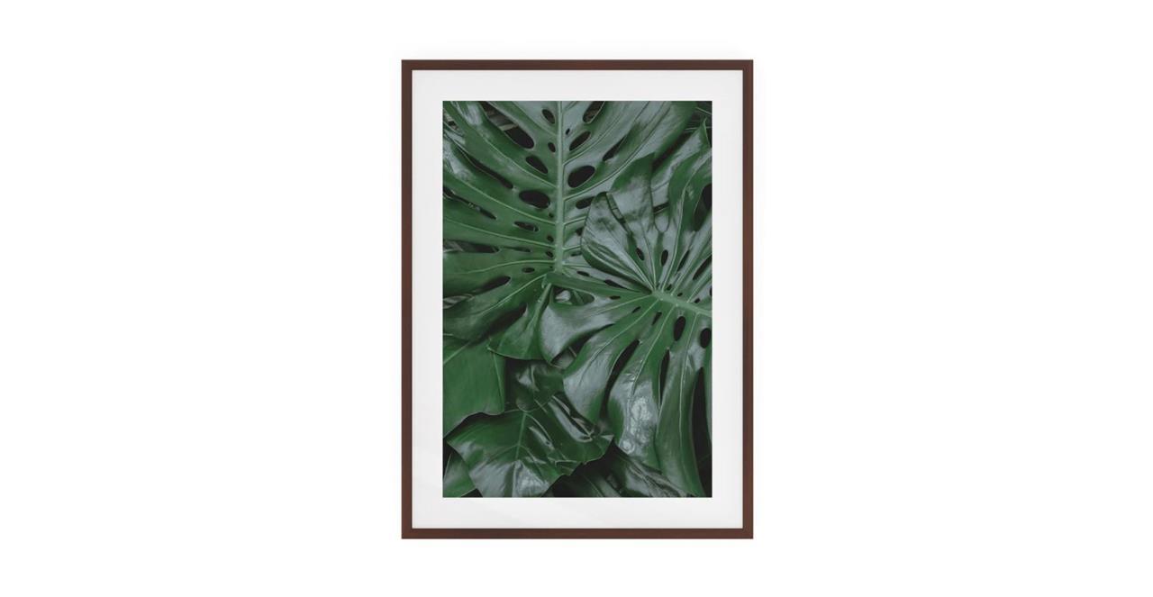 The Philodendron Print Dark Brown Wood Frame Medium