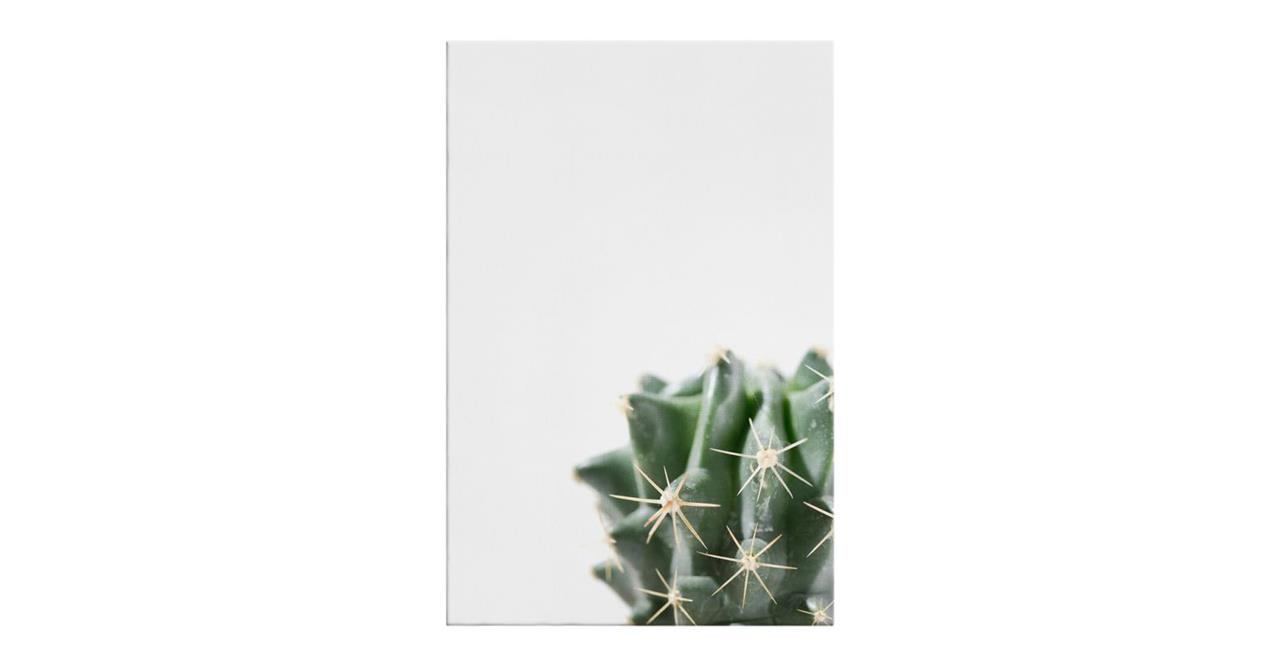 The Prickle Print Canvas Small Right