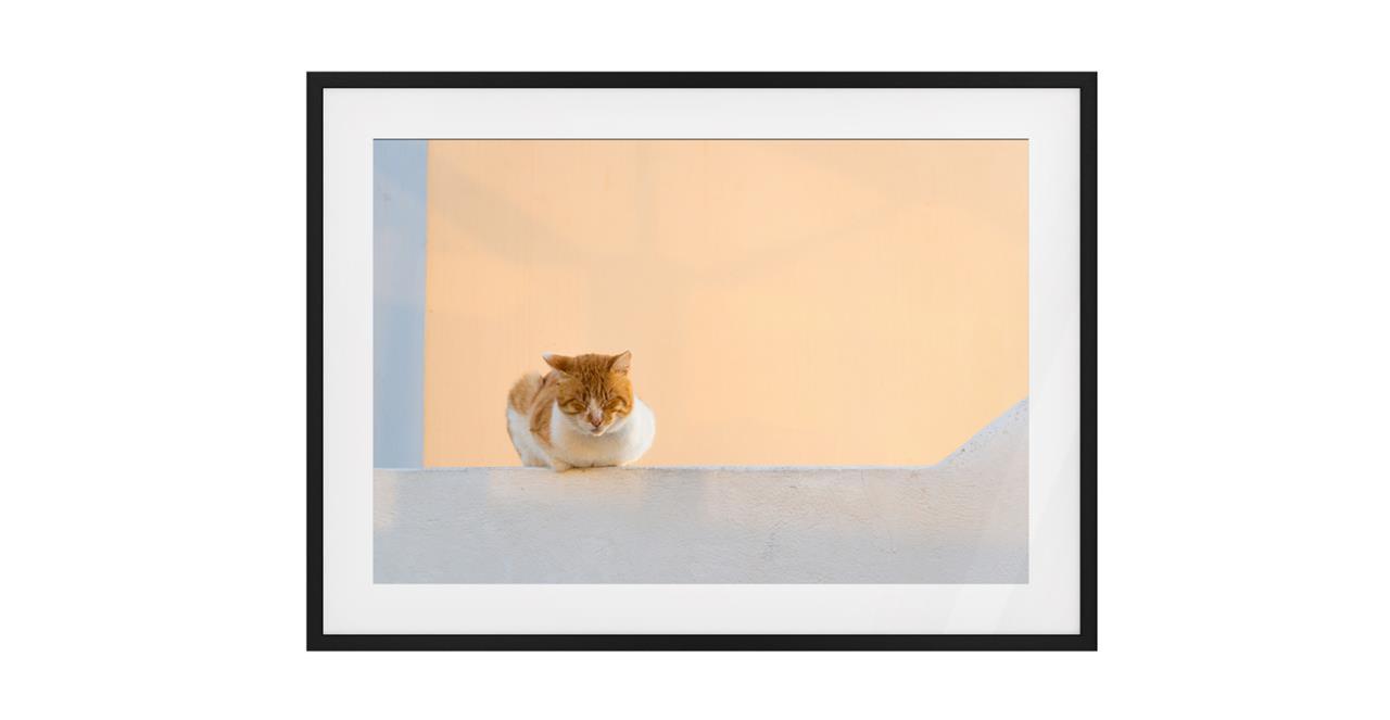 The Feline Print Black Wood Frame Medium