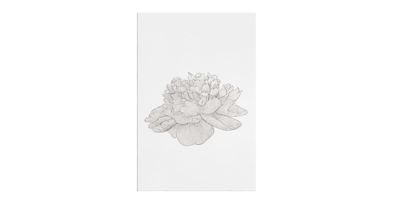 The Flowering Print Canvas Small Cream