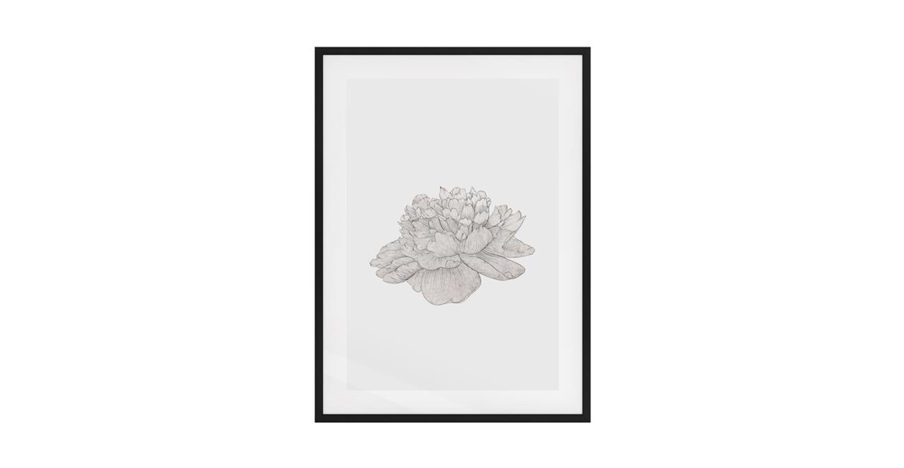 The Flowering Print Black Wood Frame Medium Cream