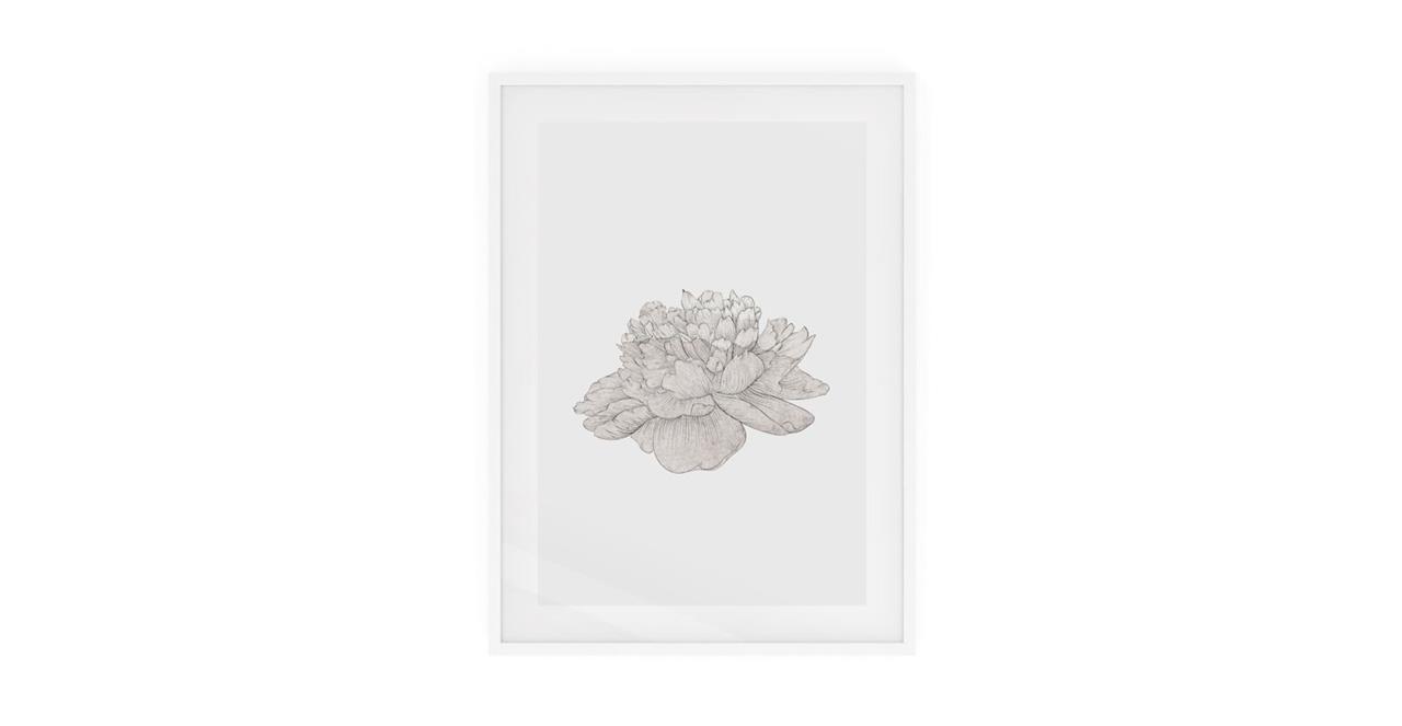 The Flowering Print White Wood Frame Medium Cream