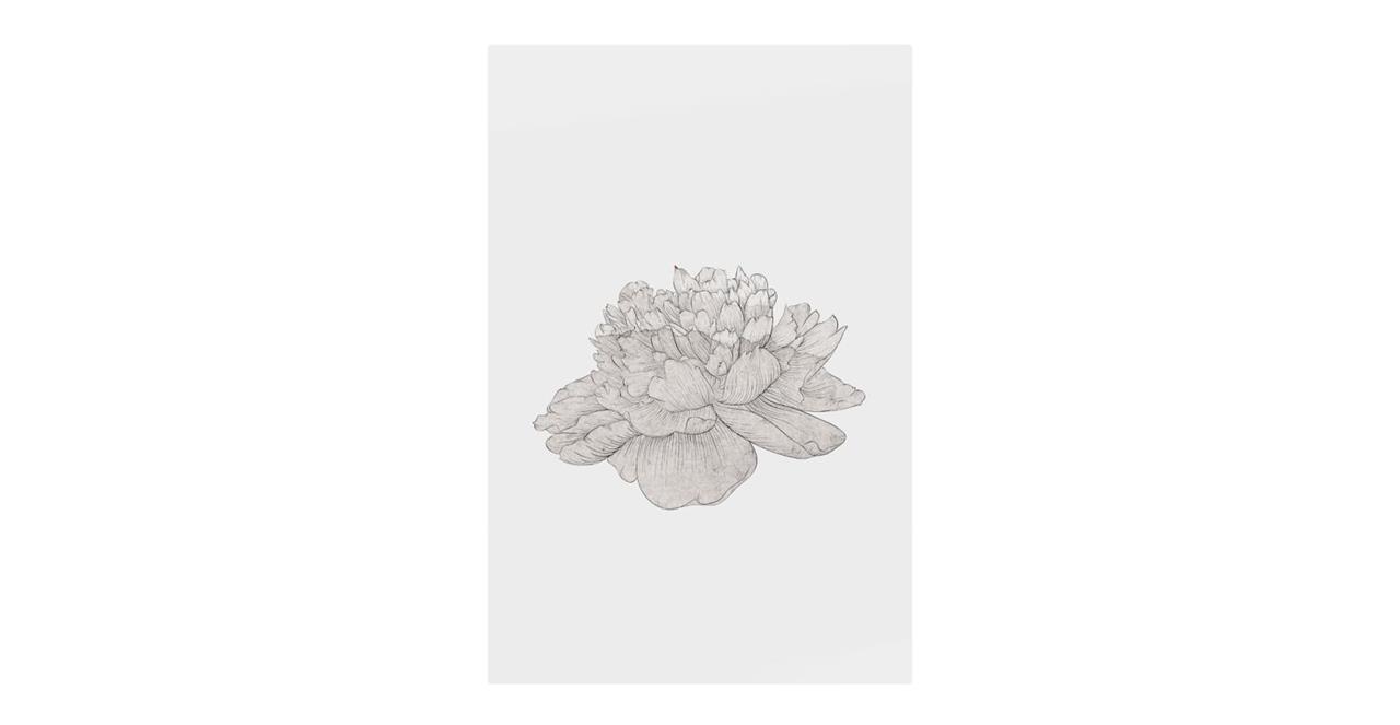 The Flowering Print Metal Print Medium Cream