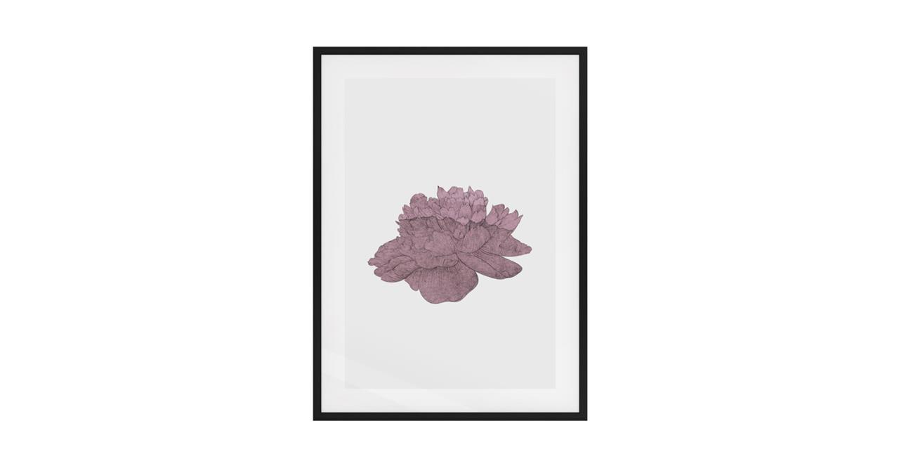 The Flowering Print Black Wood Frame Medium Dusty Pink