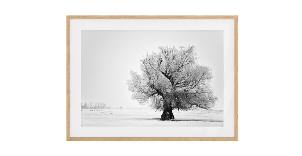 The Frost Print Natural Wood Frame Small