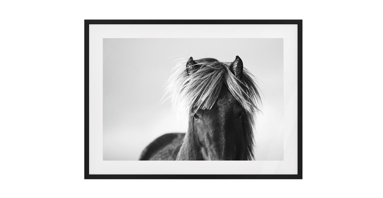 The Gallop Print Black Wood Frame Small