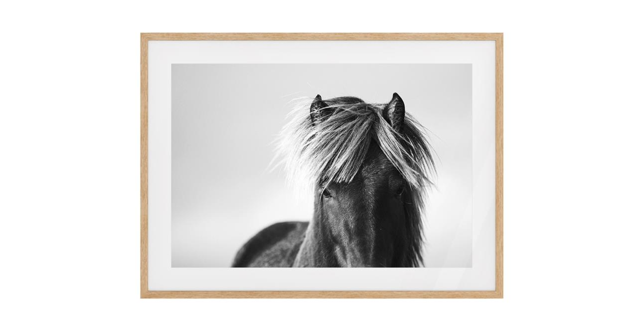 The Gallop Print Natural Wood Frame Small