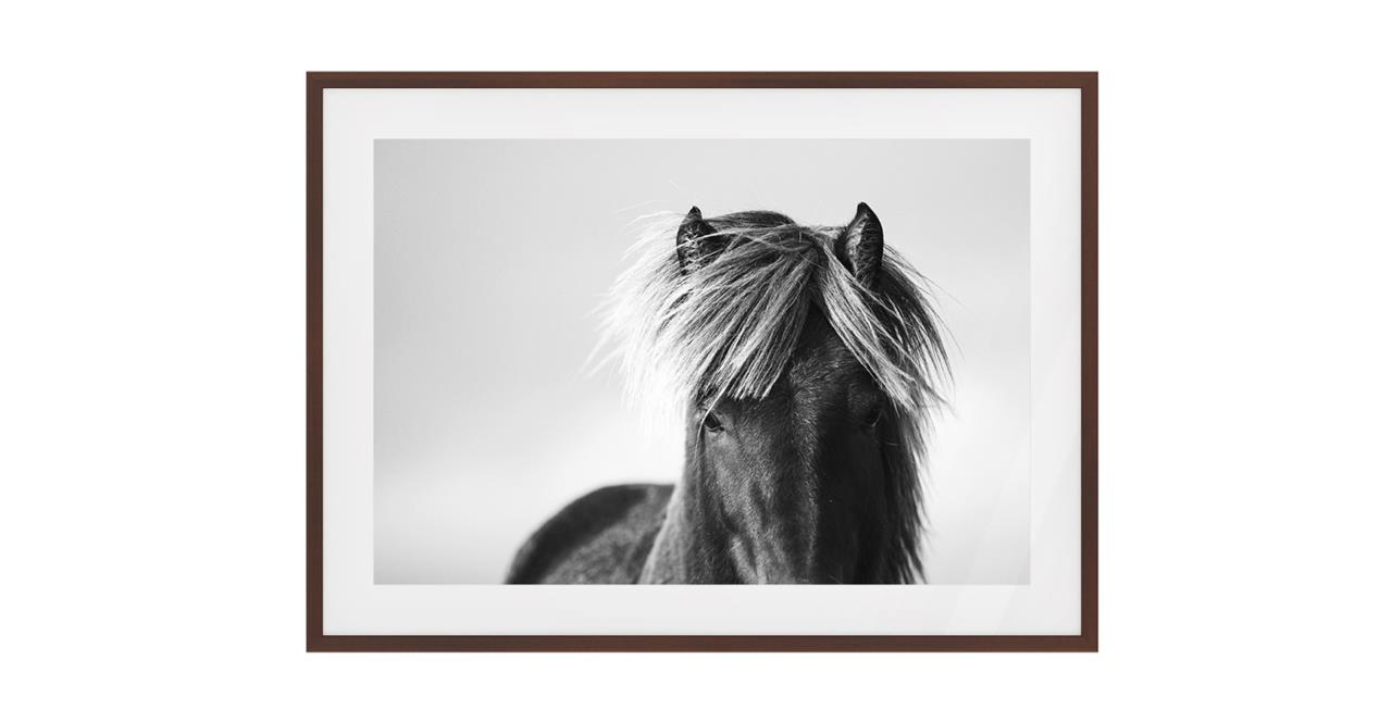 The Gallop Print Dark Brown Wood Frame Small