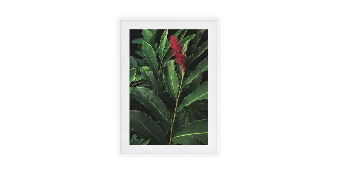 The Red Ginger Print White Wood Frame Small