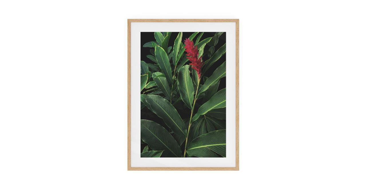 The Red Ginger Print Natural Wood Frame Small