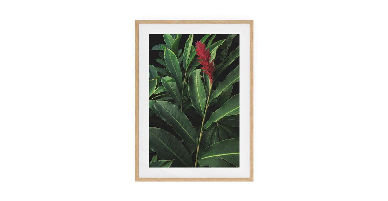 The Red Ginger Print Natural Wood Frame Medium