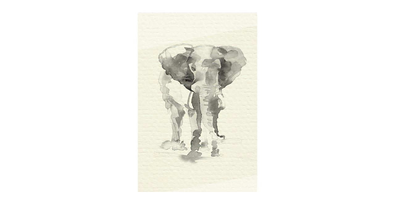 The Safari Print Metal Print Small Elephant
