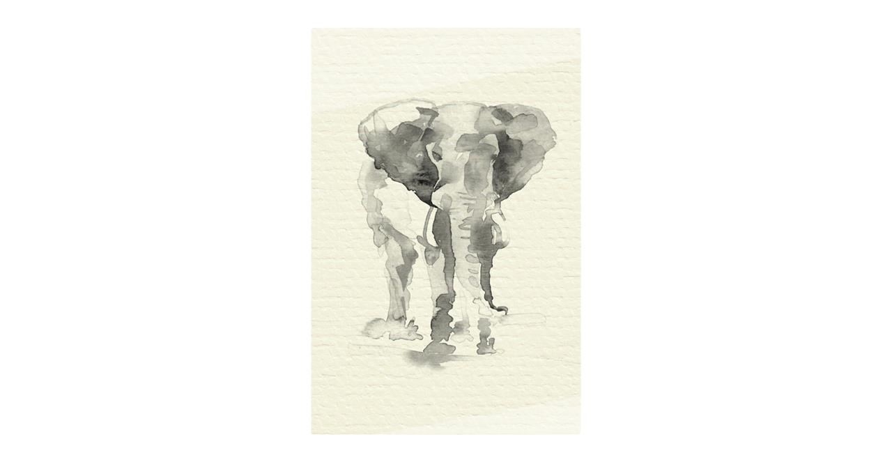 The Safari Print Metal Print Medium Elephant