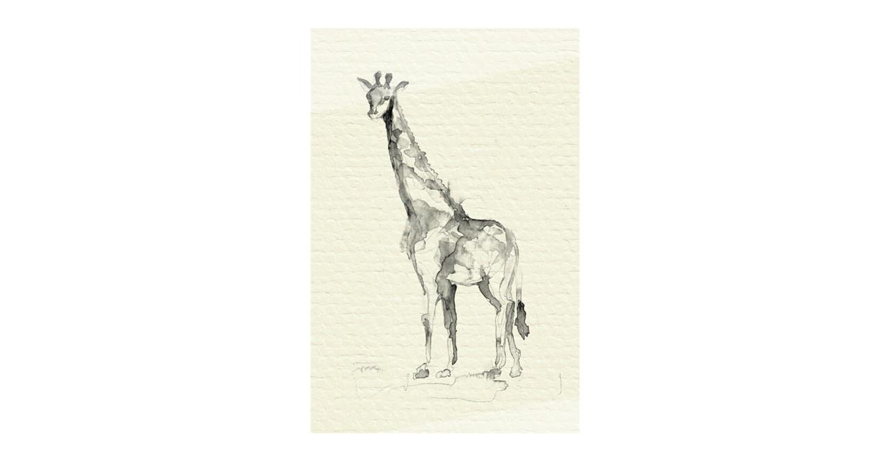 The Safari Print Metal Print Medium Giraffe
