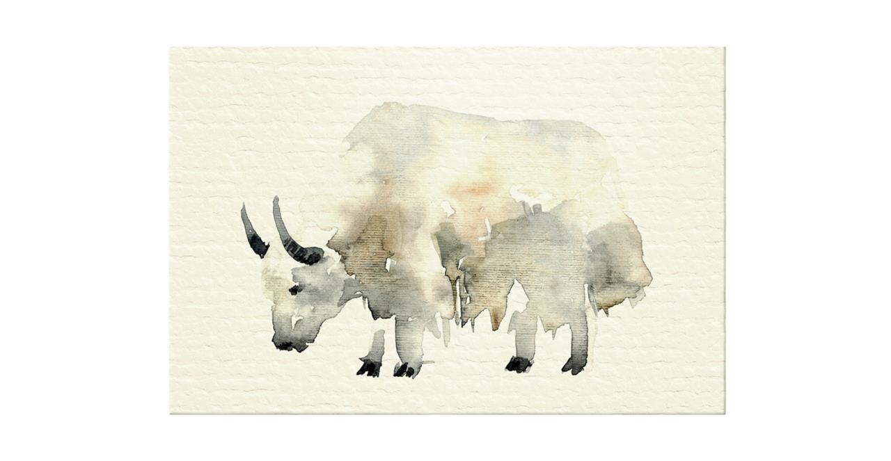 The Safari Print Canvas Small Yak