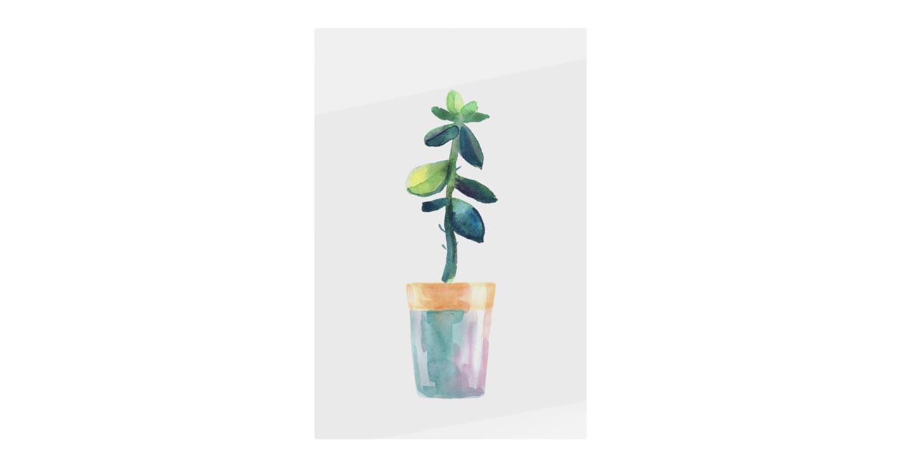 The Succulent Print Metal Print Medium Leaf