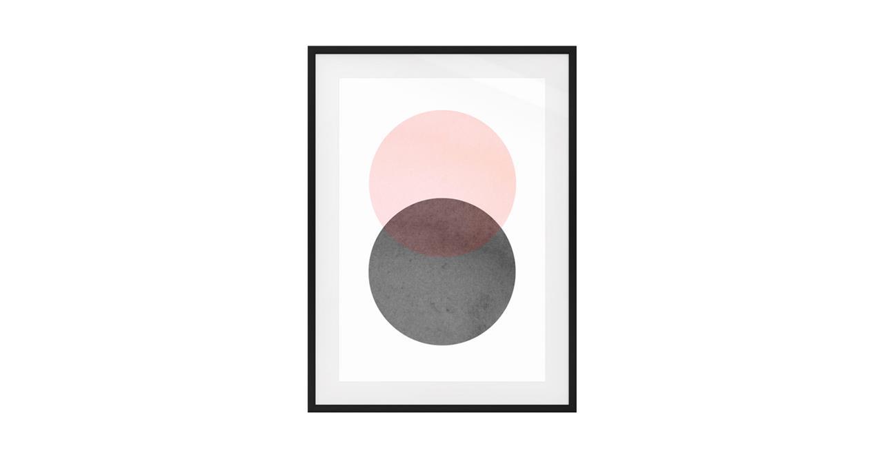The Venn Print Black Wood Frame Medium Rose