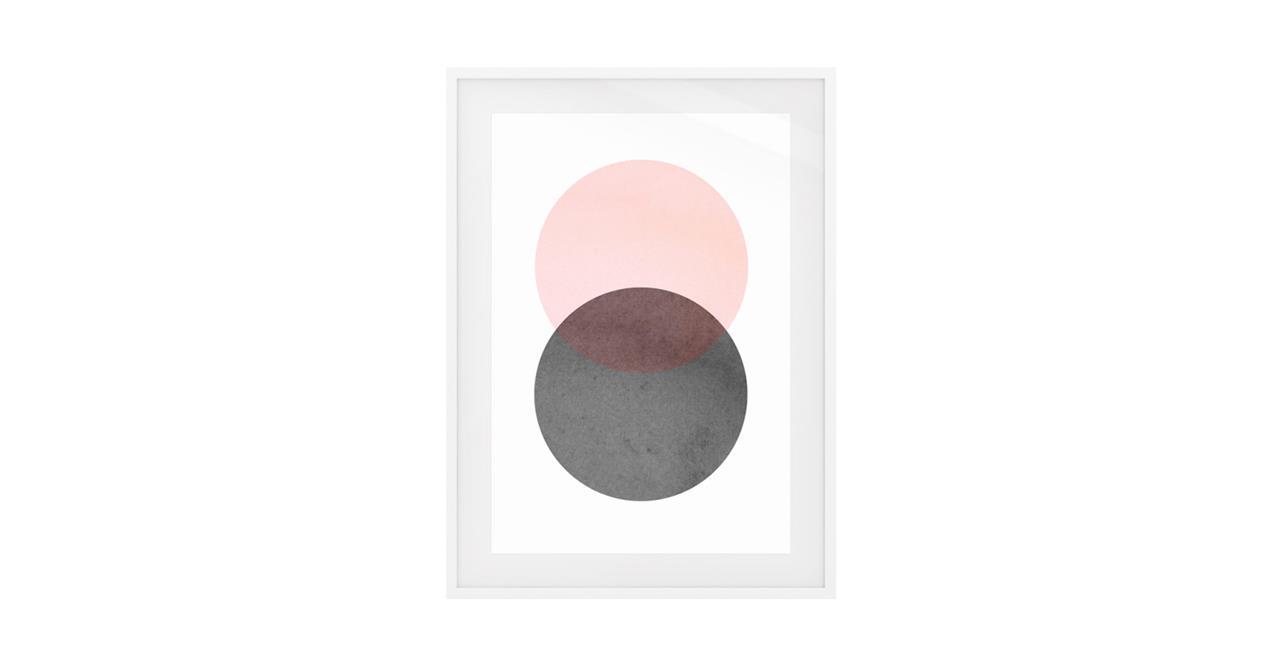 The Venn Print White Wood Frame Medium Rose