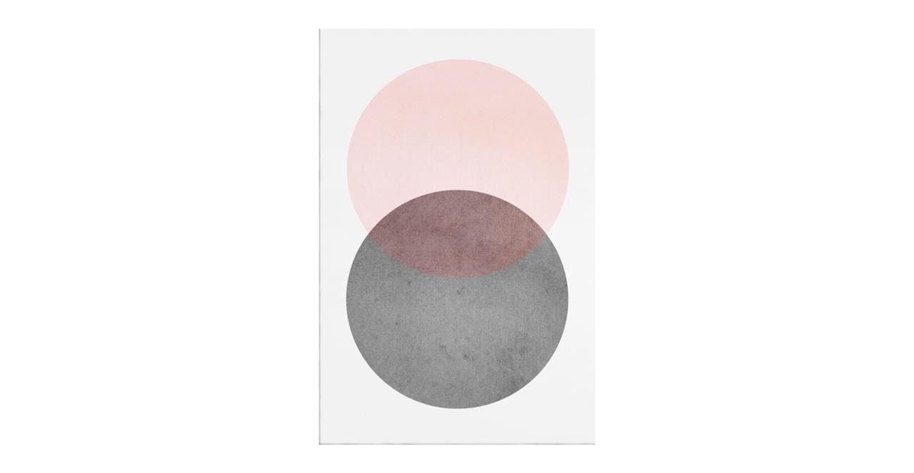 The Venn Print Canvas Medium Rose