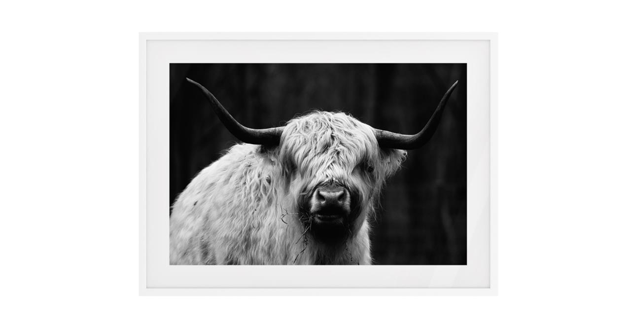 The Highland Print White Wood Frame Medium