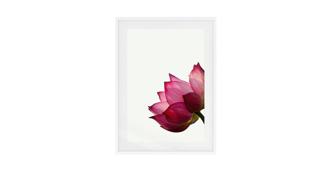 The Lotus Print White Wood Frame Small