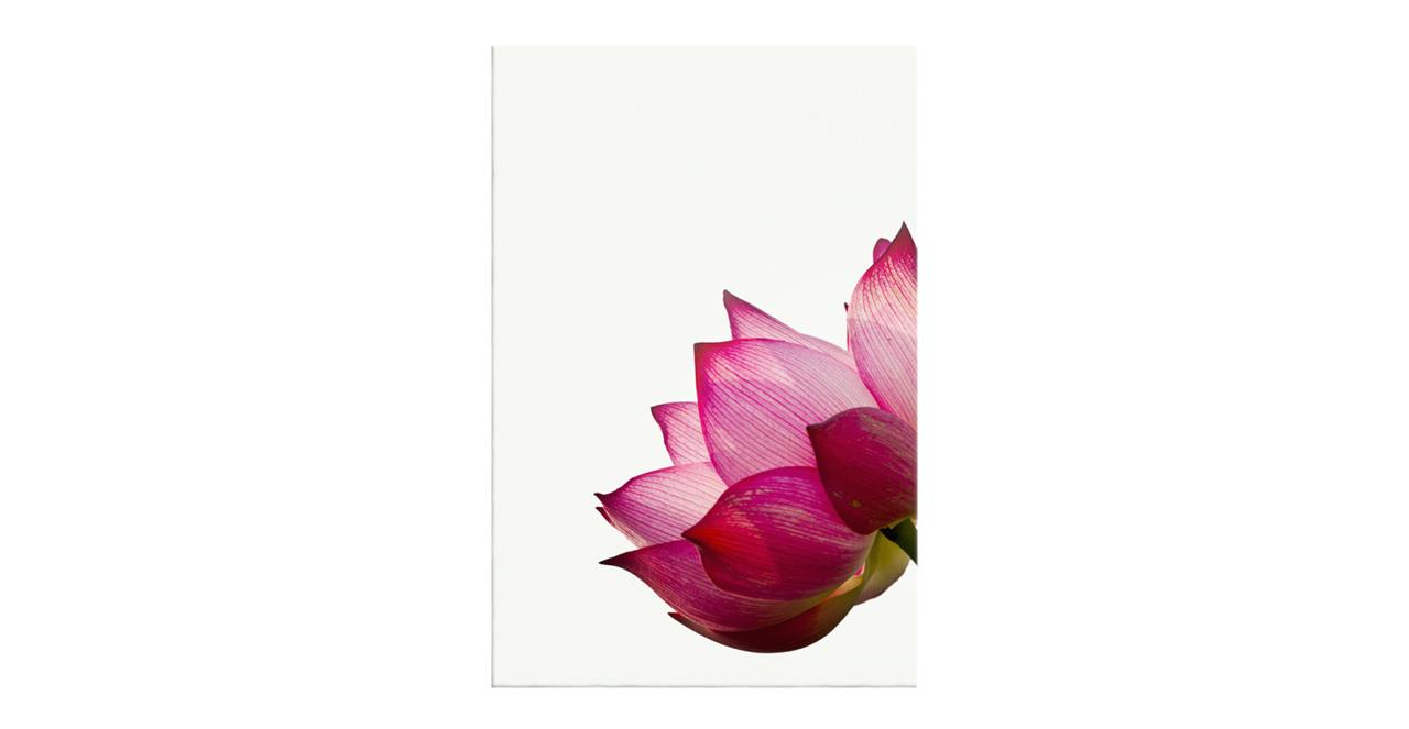 The Lotus Print Canvas Medium