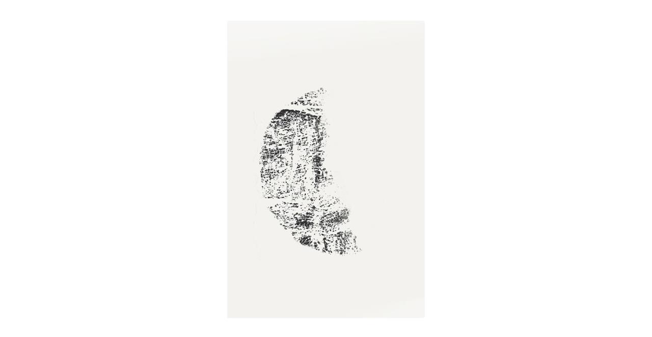 The Lunar Print Metal Print Medium Crescent