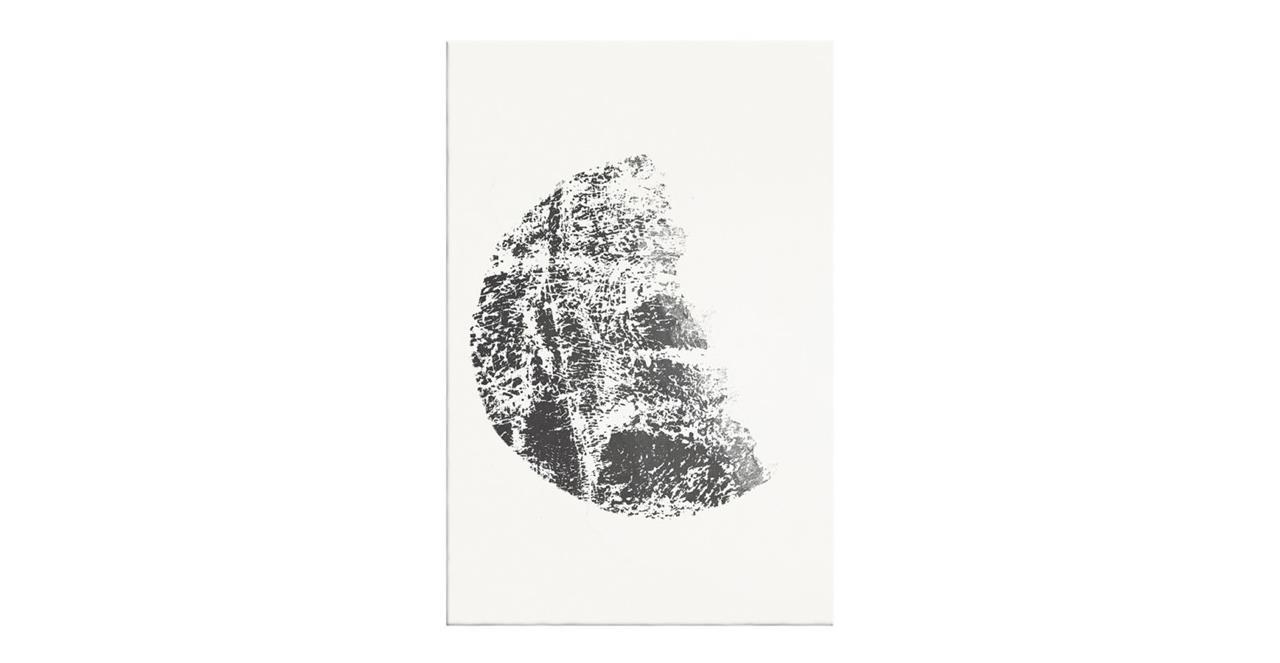 The Lunar Print Canvas Medium Gibbous