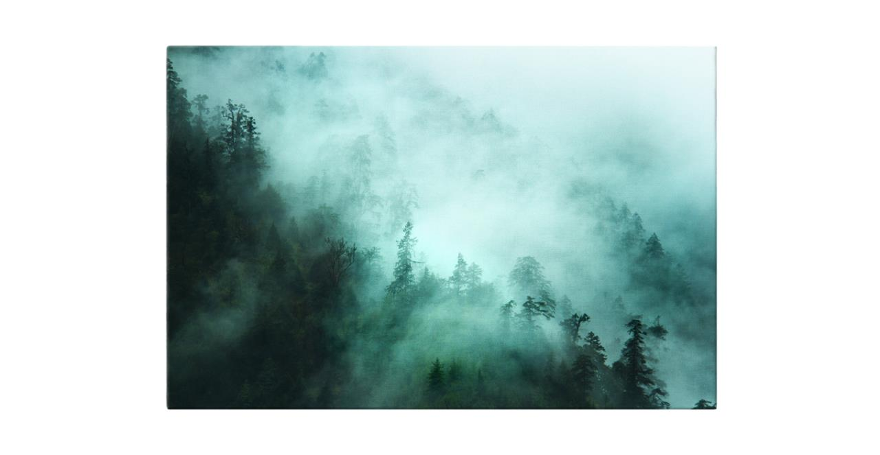The Mist Print Canvas Small