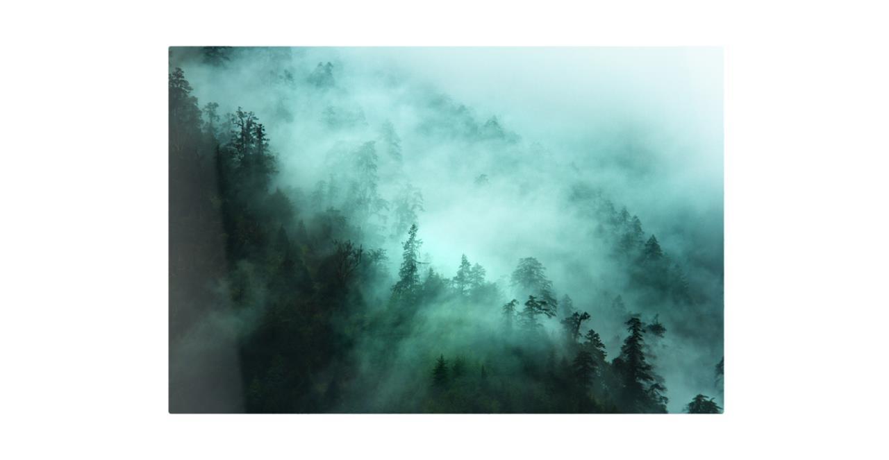 The Mist Print Metal Print Medium