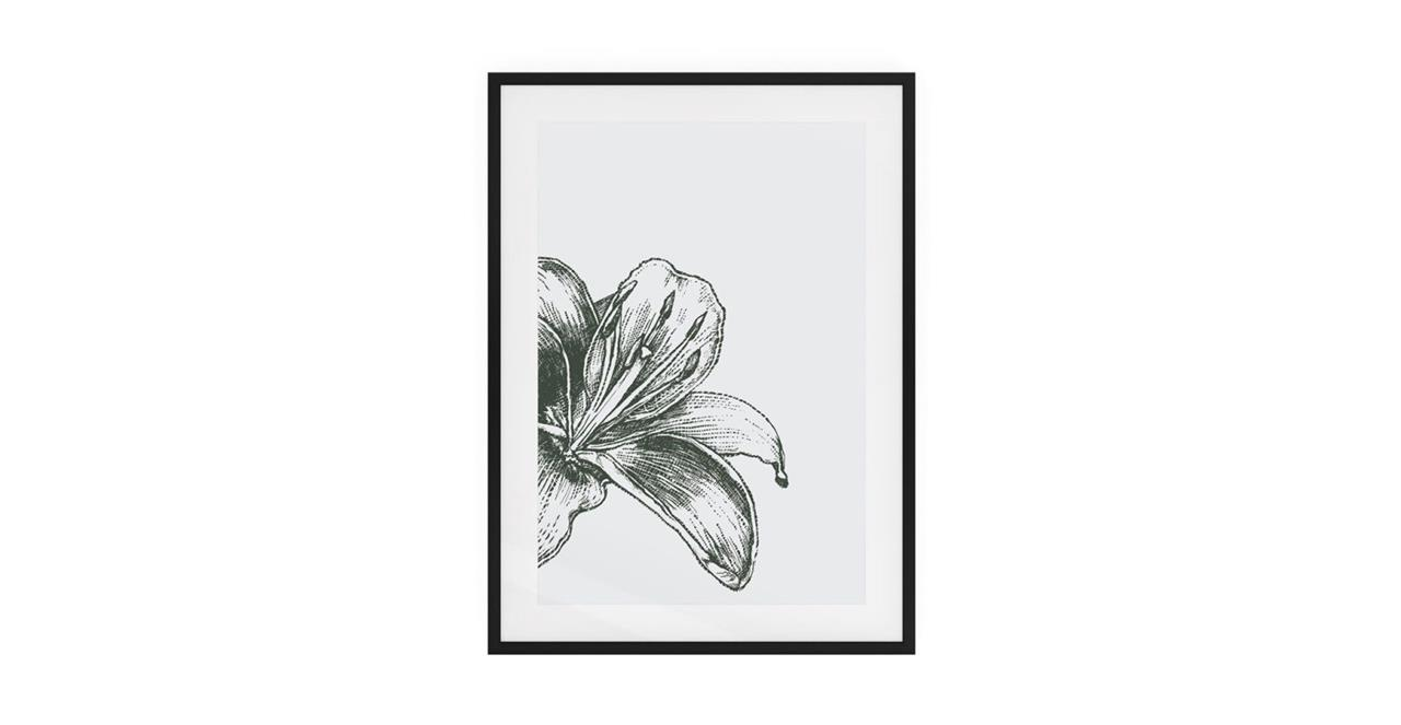 The Monochrome Print Black Wood Frame Small Lily