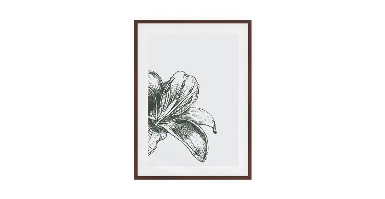 The Monochrome Print Dark Brown Wood Frame Medium Lily