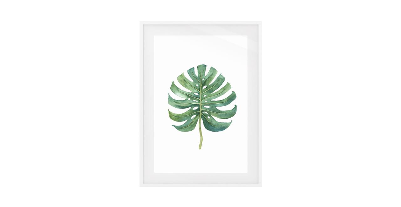 The Monstera Print White Wood Frame Small Monstera Cloud