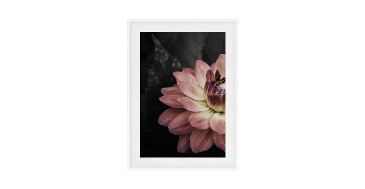 The Water Lily Print White Wood Frame Small