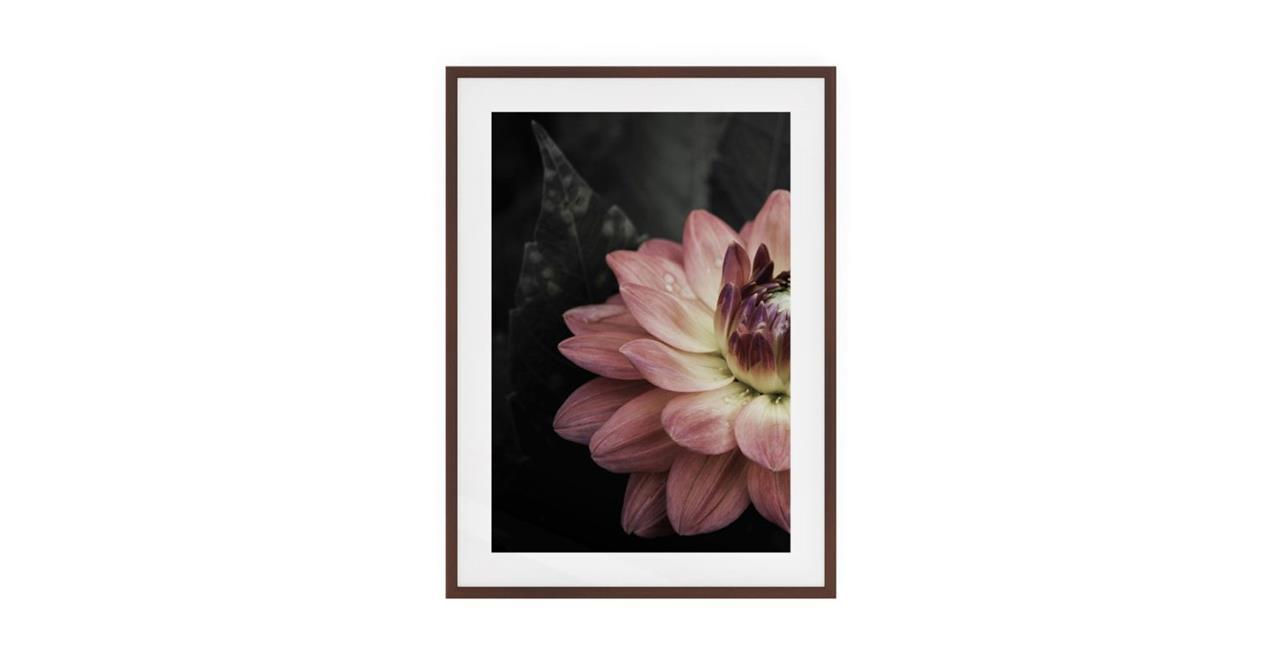 The Water Lily Print Dark Brown Wood Frame Medium