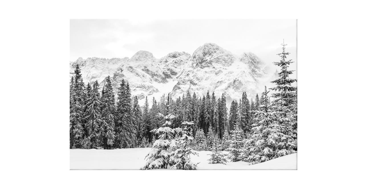 The Winter Print Canvas Medium