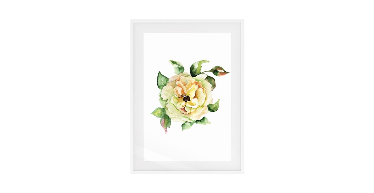 The Yellow Rose Print White Wood Frame Small