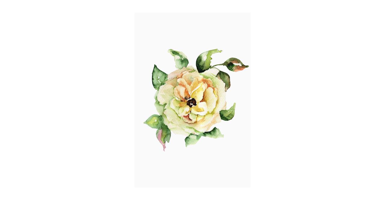 The Yellow Rose Print Metal Print Medium