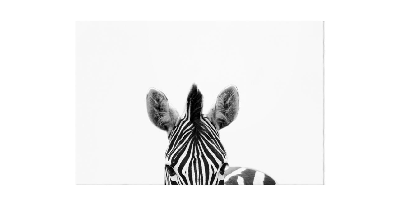 The Zebra Print Canvas Medium